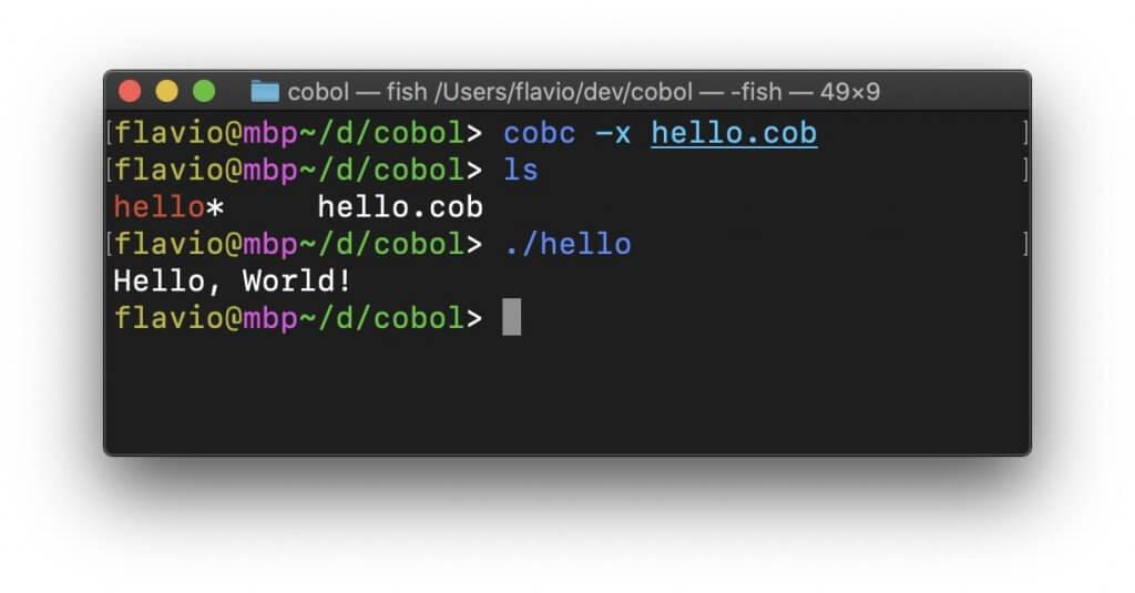 COBOL入门教程